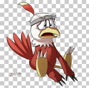Rooster Bird Of Prey Beak Illustration PNG