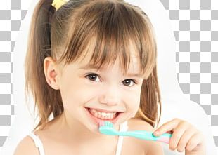 Tooth Brushing Dentistry Human Tooth PNG