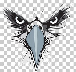 Bald Eagle Logo Graphic Design PNG