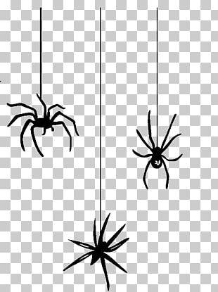 Spider Web Halloween Spider-Man PNG