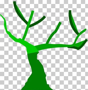 Trunk Tree PNG