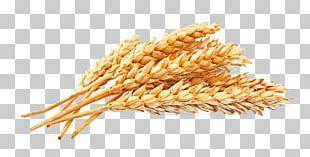 Atta Flour White Bread Whole-wheat Flour Wheat Berry Whole Grain PNG