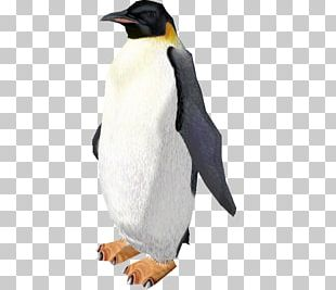 King Penguin Zoo Tycoon 2 Video Game PNG