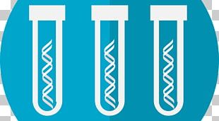 Genetic Testing Genetics Genealogical DNA Test Genetic Disorder PNG