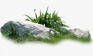 Rock Grass Material PNG