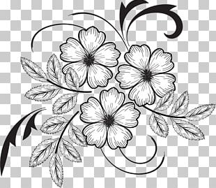 Floral Design Drawing Pattern PNG