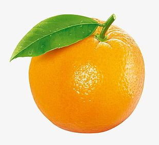 Orange Fruit PNG