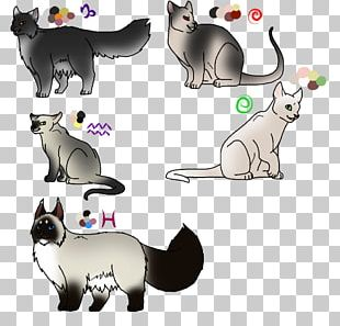 Kitten Whiskers Dog Cat PNG