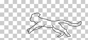 Dog Lion Cat Mane Mustang PNG