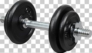 Dumbbell Barbell Kettlebell Exercise Machine Physical Exercise PNG