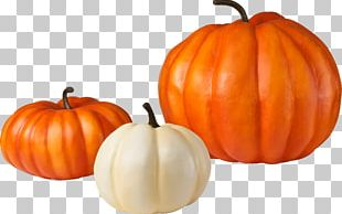 Pumpkin Pie Zucchini Vegetable PNG