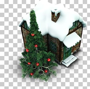 Fir Evergreen Christmas Ornament Pine Family Tree PNG