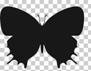 Butterfly Insect Silhouette Stencil PNG