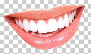 Smile Mouth Human Tooth PNG