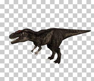 Carcharodontosaurus Jurassic Park: Operation Genesis Tyrannosaurus Jurassic Park III: Park Builder Dilophosaurus PNG