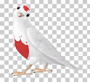 Team Fortress 2 Portal Bird Archimedes Palimpsest PNG