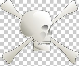 Bone Human Skull Symbolism PNG