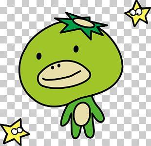 Leaf Smiley Green Cartoon PNG