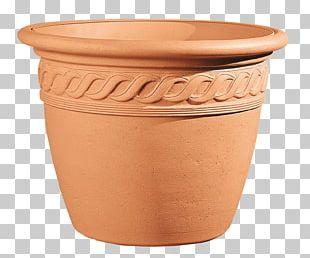 Flowerpot Garden Bonsai PNG