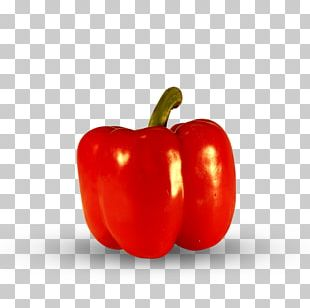 Habanero Yellow Pepper Red Bell Pepper Cayenne Pepper Tabasco Pepper PNG