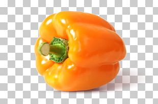 Habanero Chili Pepper Capsicum Bell Pepper Vegetable Steiner GmbH & Co. KG PNG