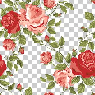 Flower Rose Stock Photography Pattern PNG