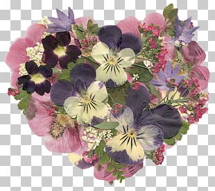 Pressed Flower Craft Floral Design Cut Flowers Flower Bouquet PNG