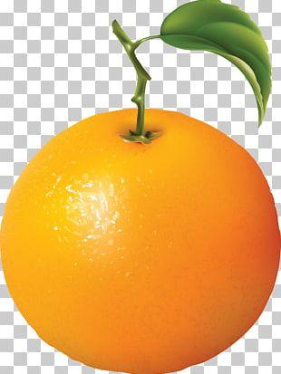 Orange PNG