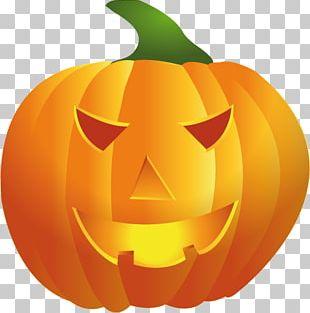 Jack-o'-lantern Calabaza Pumpkin Winter Squash Drawing PNG