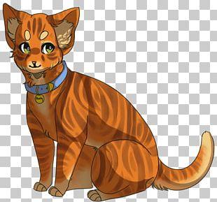 Into The Wild Cat Firestar Warriors Cinderpelt PNG