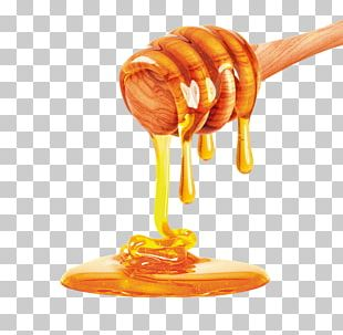 Bee Honey Stock Photography Apple PNG