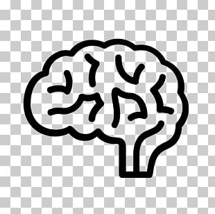 The Female Brain Computer Icons Human Brain PNG