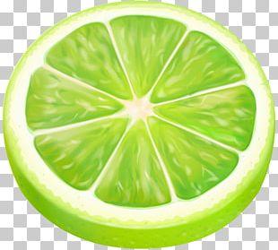 Lemon-lime Drink Drawing PNG