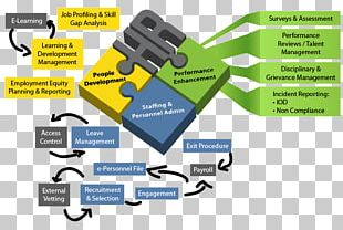 Human Resource Management Human Resource Management Business Workforce Management PNG