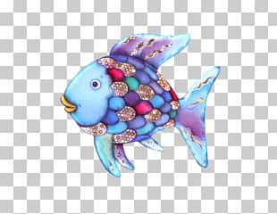 Marine Biology Marine Mammal Turquoise Fish PNG