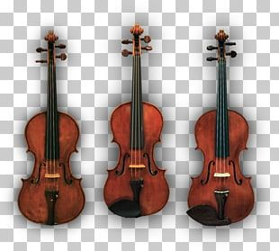 How To Make A Violin Viola Cello Musical Instruments PNG