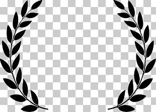 Cannes Film Festival Logo PNG