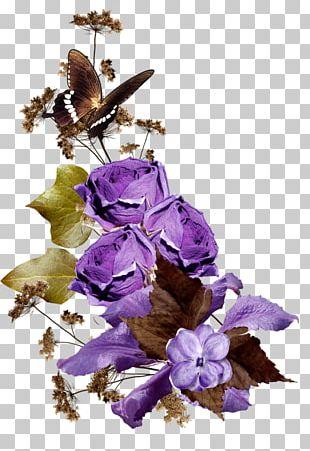 Purple Flower Arranging Violet PNG