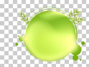 Green Circle PNG