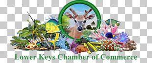 Key West Florida Keys Sea Vista Estate Stock Island PNG
