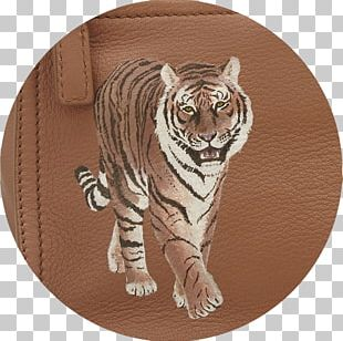 Tiger Cat Roar Whiskers Wildlife PNG