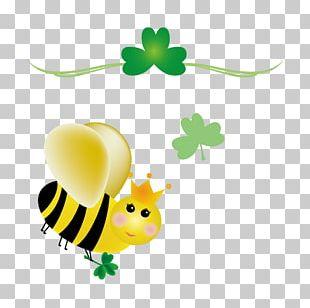 Ireland Bee Saint Patricks Day Shamrock PNG