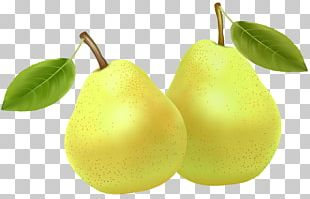 Pear Fruit Clipping Path PNG