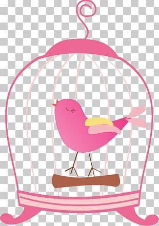 Birdcage Beak PNG