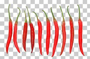 Tabasco Pepper Cayenne Pepper Chili Pepper PNG