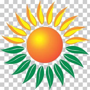 Bright Green Energy Foundation Organization Renewable Energy Solar Power Management PNG