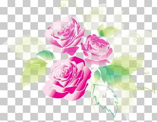 Rose Greeting & Note Cards Shading PNG