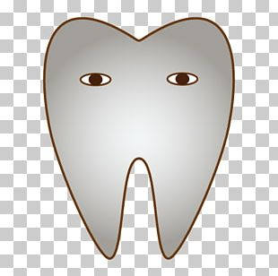Tooth Dentist Inlays And Onlays Dentition Dental Braces PNG
