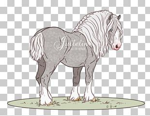 Pony Horse Drawing Foal Pack Animal PNG