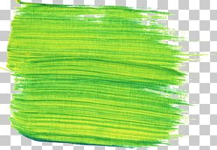 Painting Paintbrush PNG